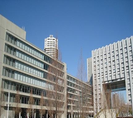 大学 芝浦 発表 工業 合格